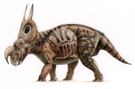 0zV9oeejmd-Dinosaurus_-_Dinosaur_-_Dinosaurio_-_Dinosaure_-_Einiosaurus001.jpg