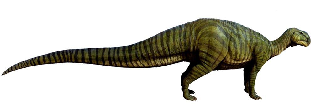 1024px-Tenontosaurus.jpg