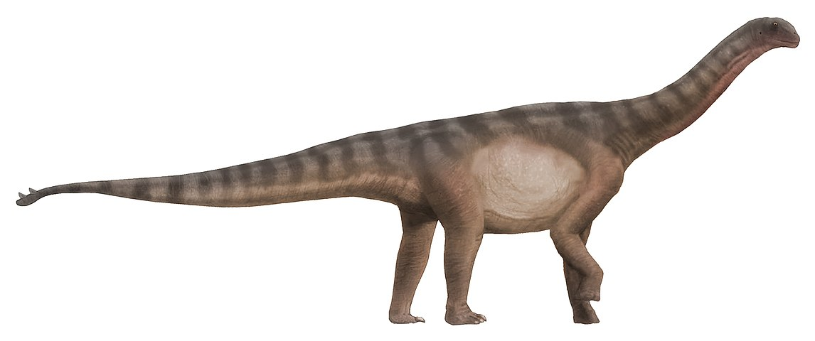 1146px-Shunosaurus_life_restoration.jpg