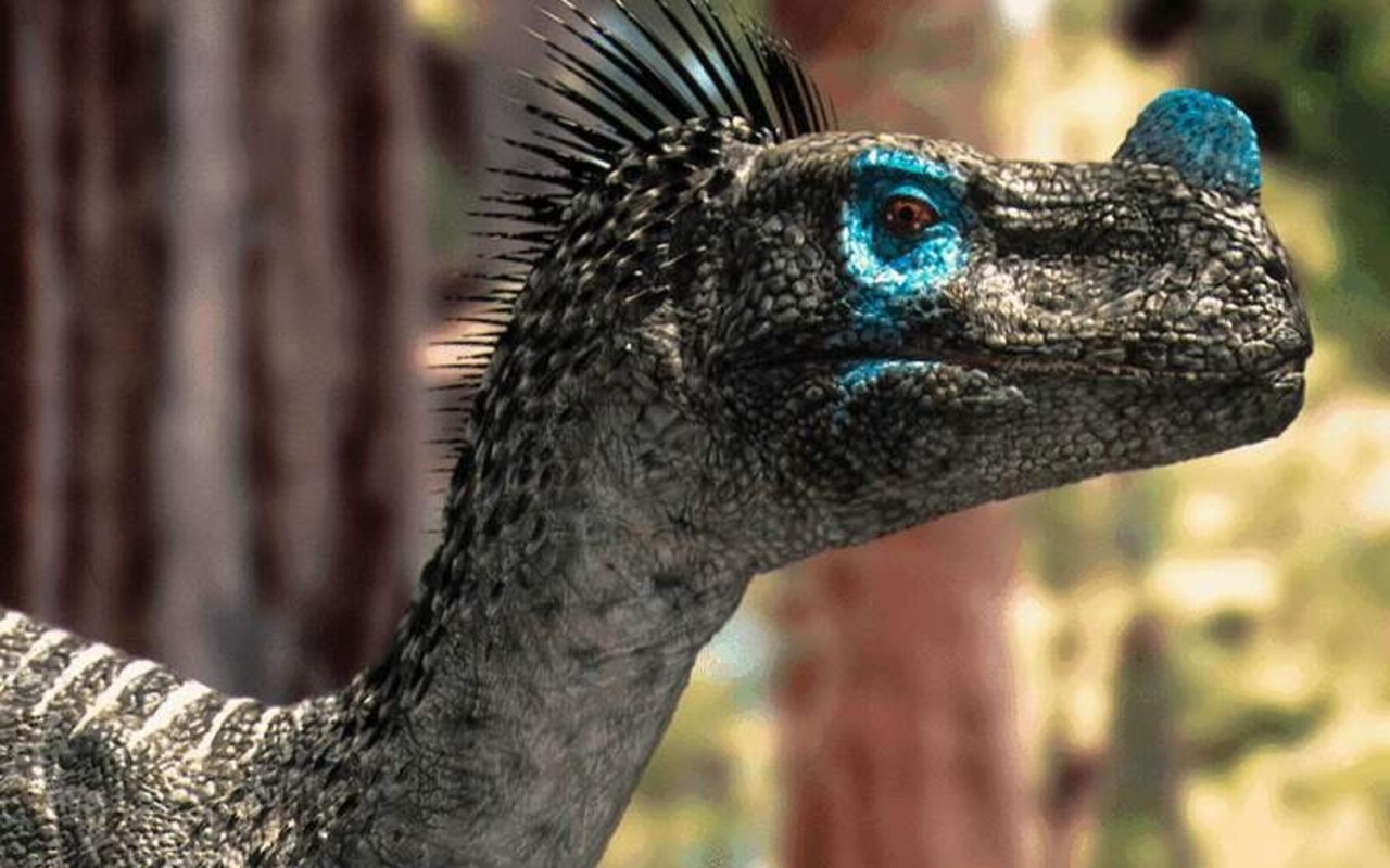 191-1912704_dinosaurs-wallpaper-031-free-wallpapers-free-desktop-walking.jpg