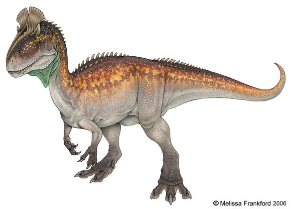 338_cryolophosaurus_melissa_frankford (2).jpg