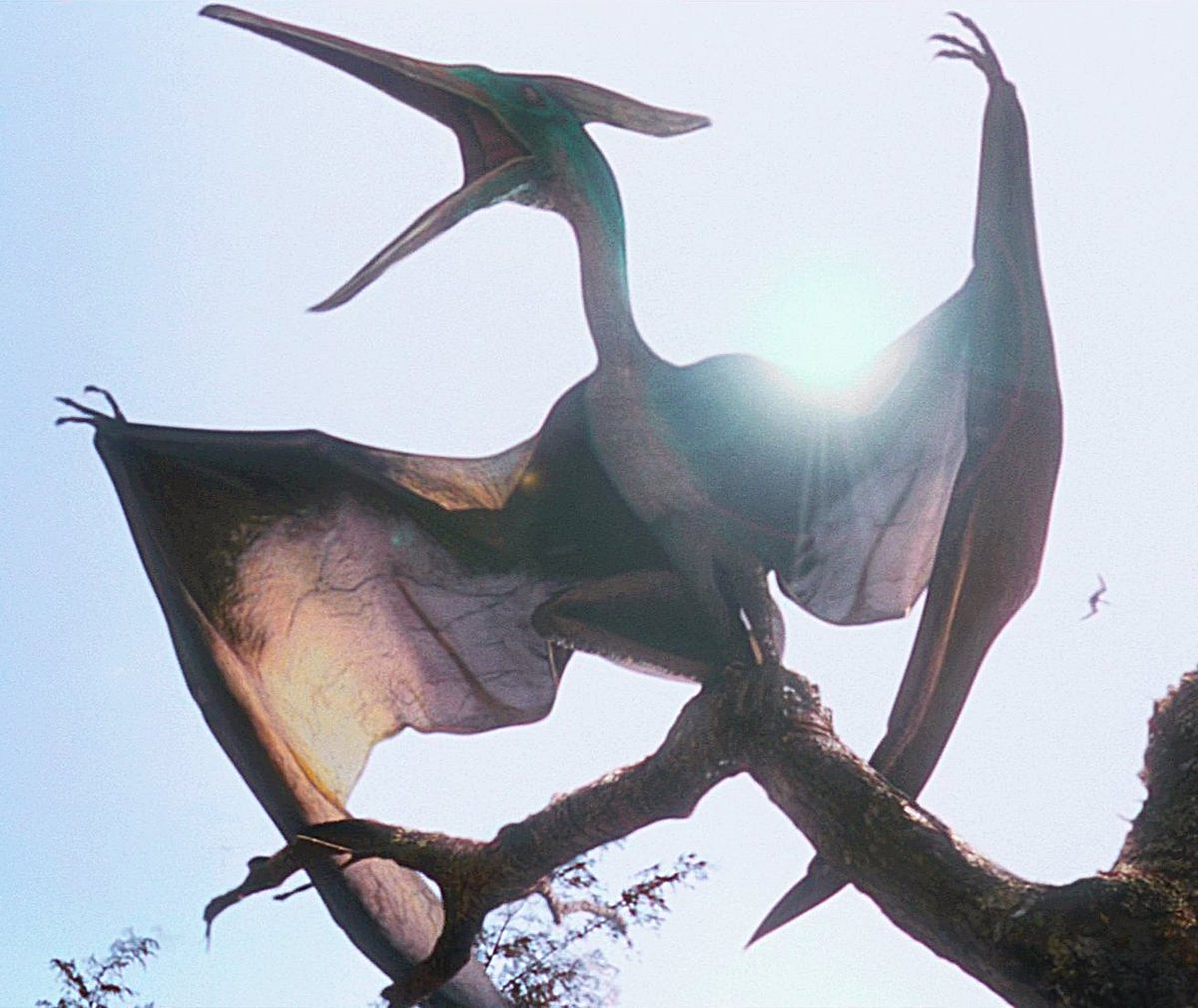 Which Pteranodon for EG/JP? by Sideswipe217 on DeviantArt