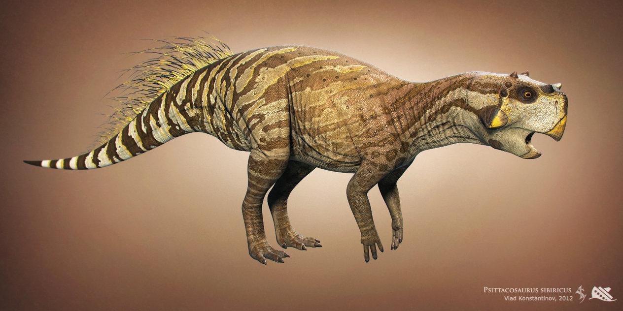 444_psittacosaurus_vlad_konstantinov.jpg