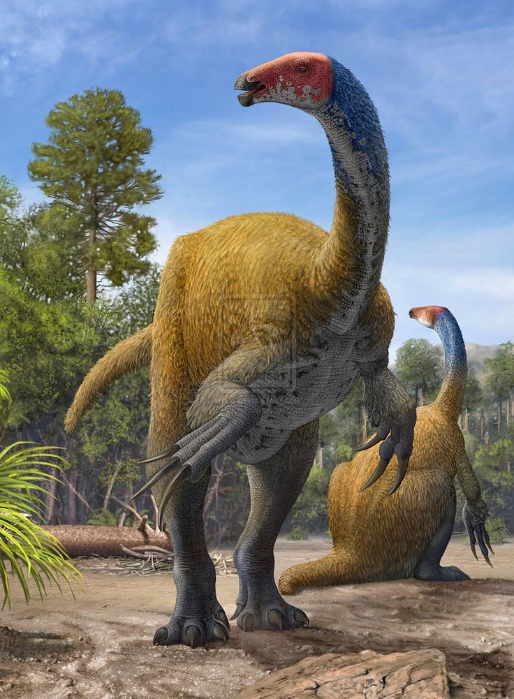 47418da3cd01443952fd8ef842c69cc7--dinosaur-discovery-prehistoric-animals.jpg
