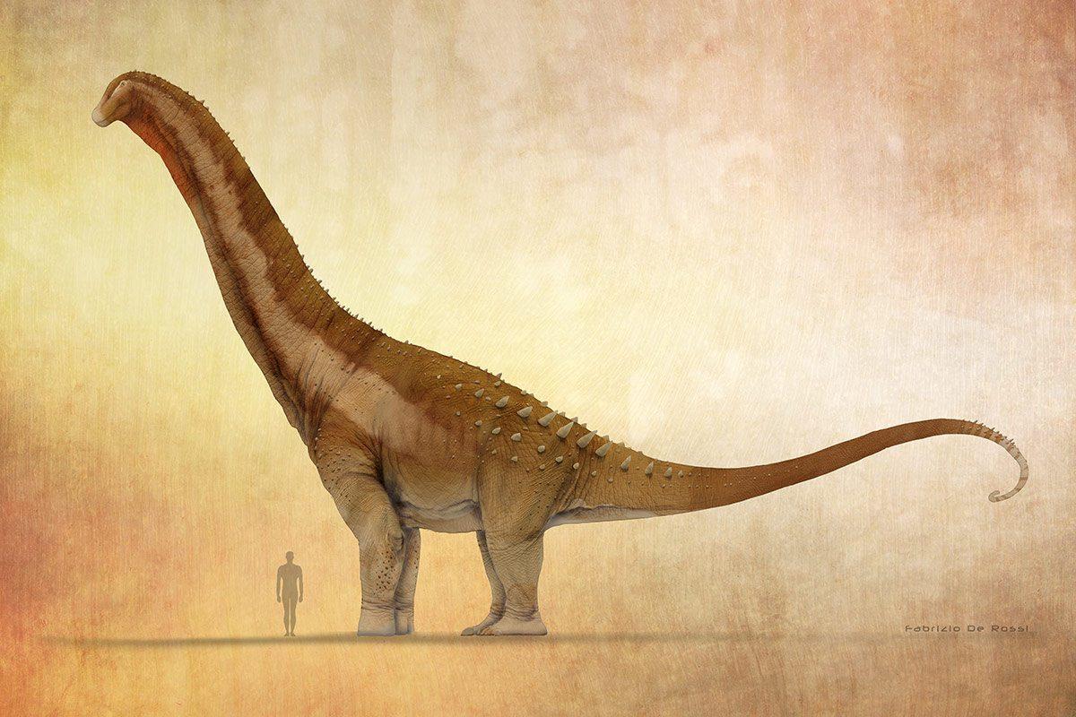 Plant Eating Dinosaur Stock Illustrations – 60 Plant Eating ... | 800x1200