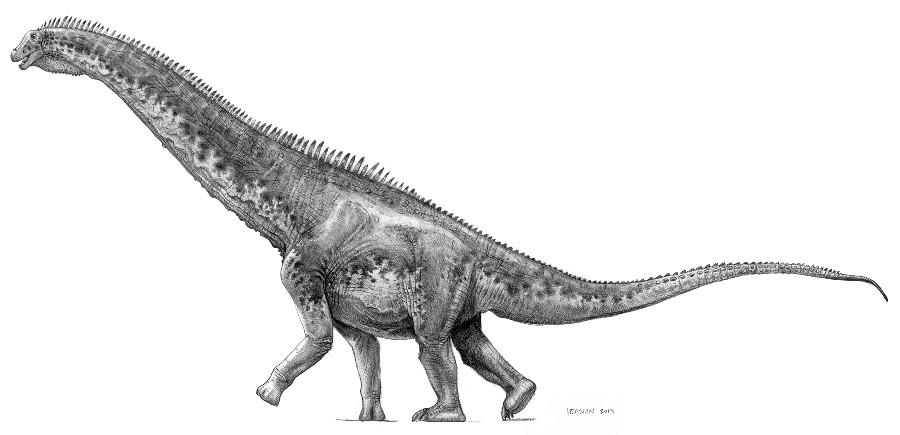 alamosaurusby_pheaston(1).jpg
