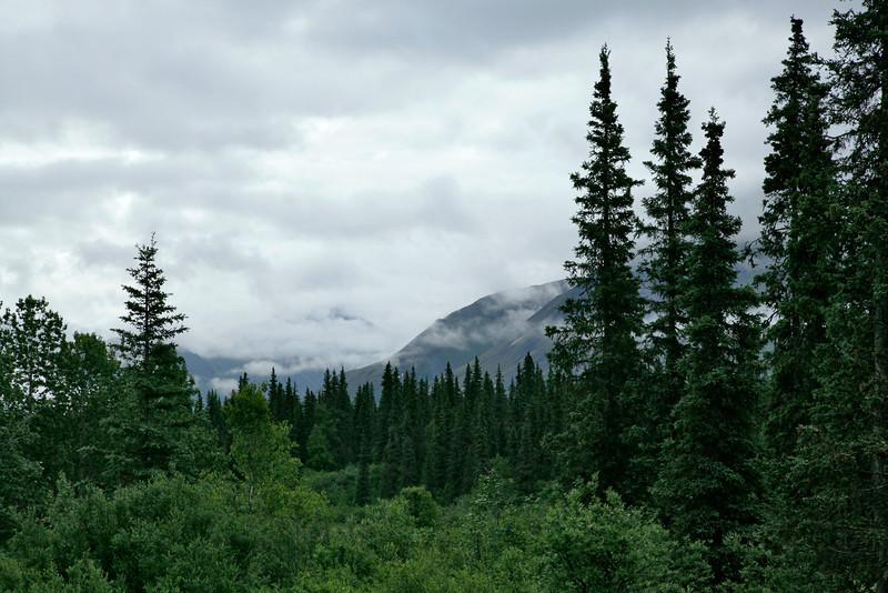 AlaskaRoadFromDenali-L.jpg