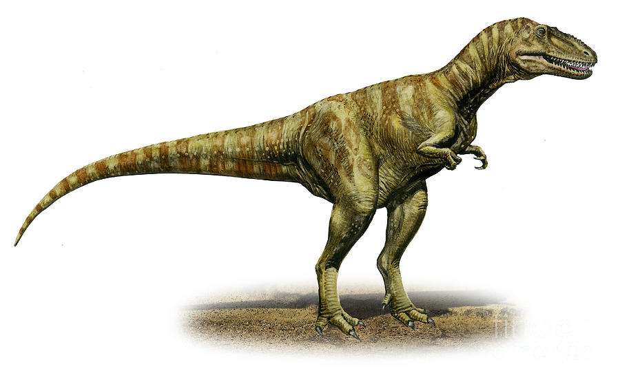 alioramus-remotus-a-prehistoric-era-sergey-krasovskiy.jpg