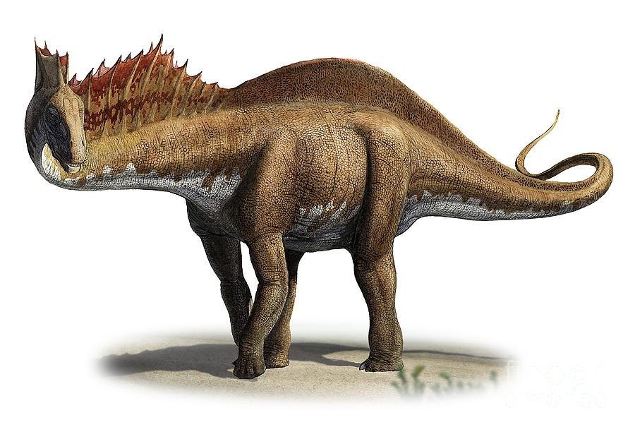 amargasaurus-cazaui-a-prehistoric-era-sergey-krasovskiy_b3f2.jpg