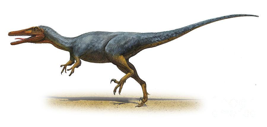 austroraptor-cabazai-a-prehistoric-era-sergey-krasovskiy.jpg