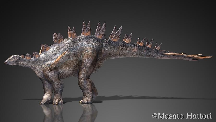 Chialingosaurus_20141010_4ba9.jpg
