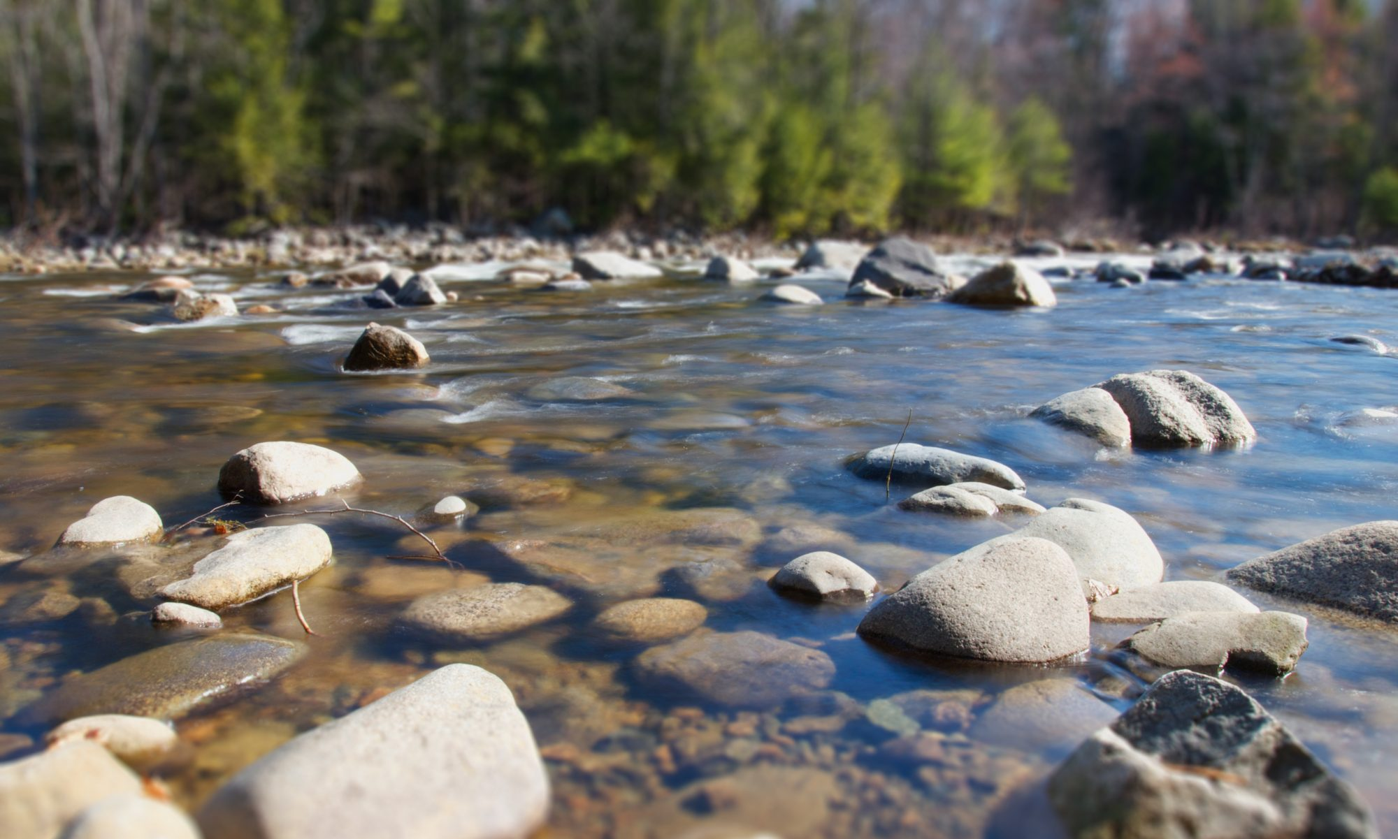 cropped-summer-rocks-trees-river.jpg