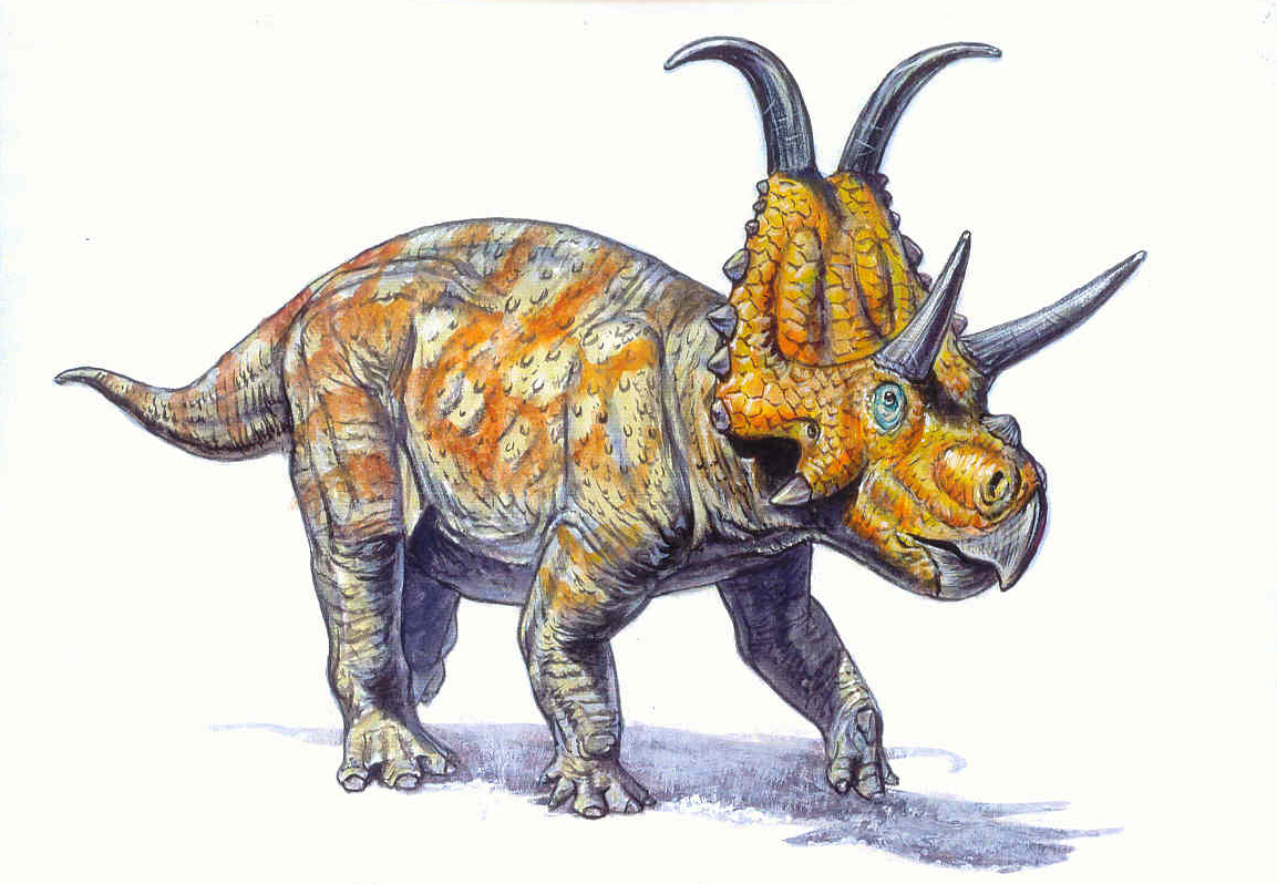 diabloceratops rendering_7.jpg
