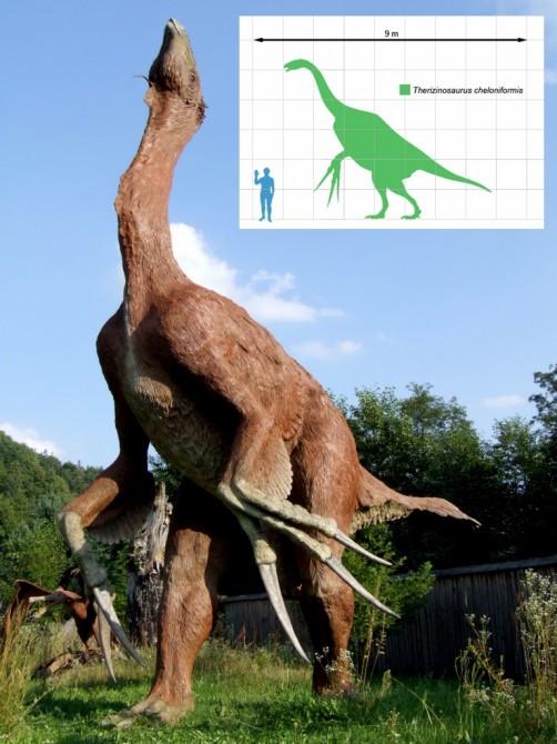 Dinosaur-Weirdest-Strangest-Coolest-Therizinosaurus-502x670.jpg