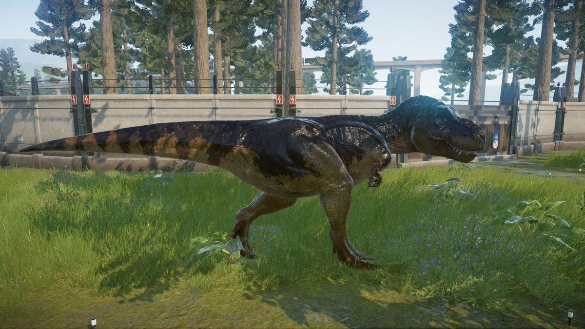 Ecosystem park 46.jpg