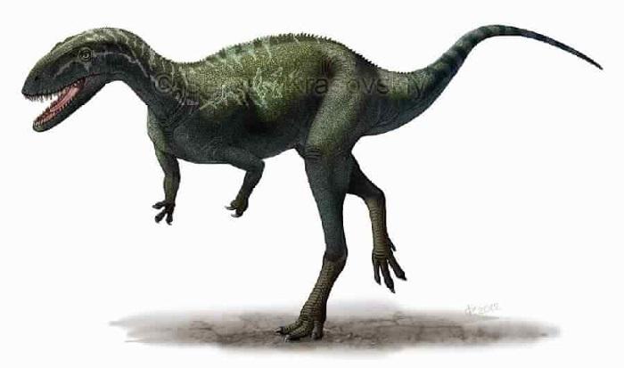 Elaphrosaurus.jpg