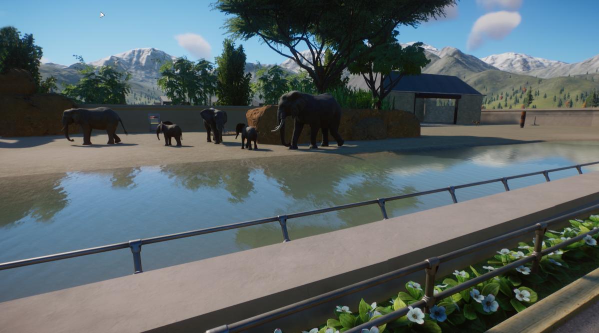 Elephant_exhibit1.png