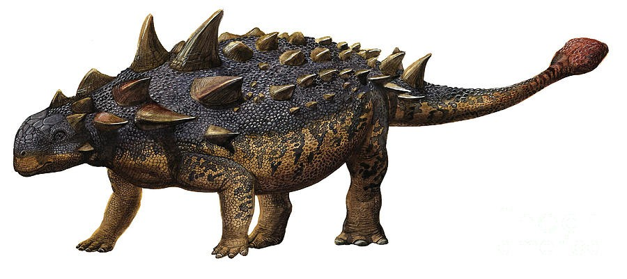 euoplocephalus-tutus-a-prehistoric-era-sergey-krasovskiy_bb8d.jpg