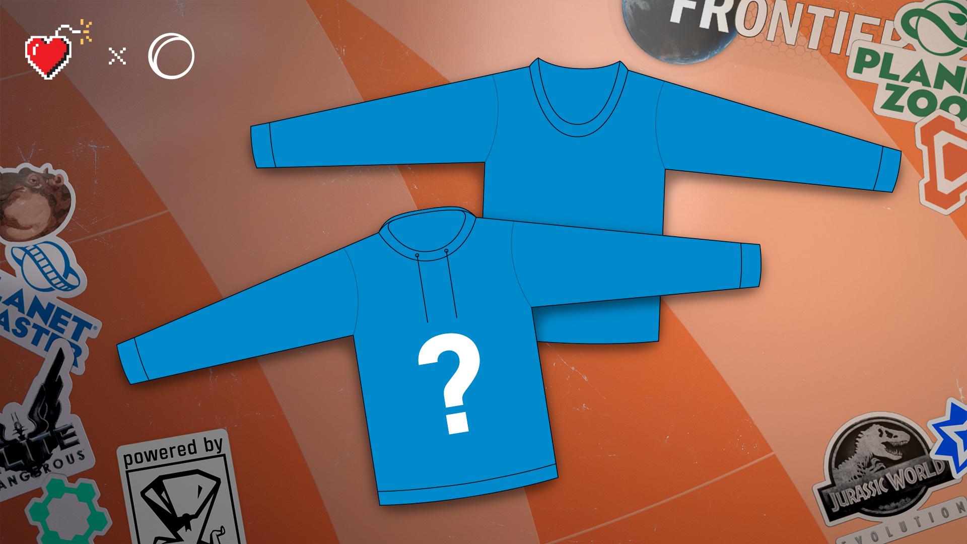 FR_charity_auction_PC_hoodie.jpg
