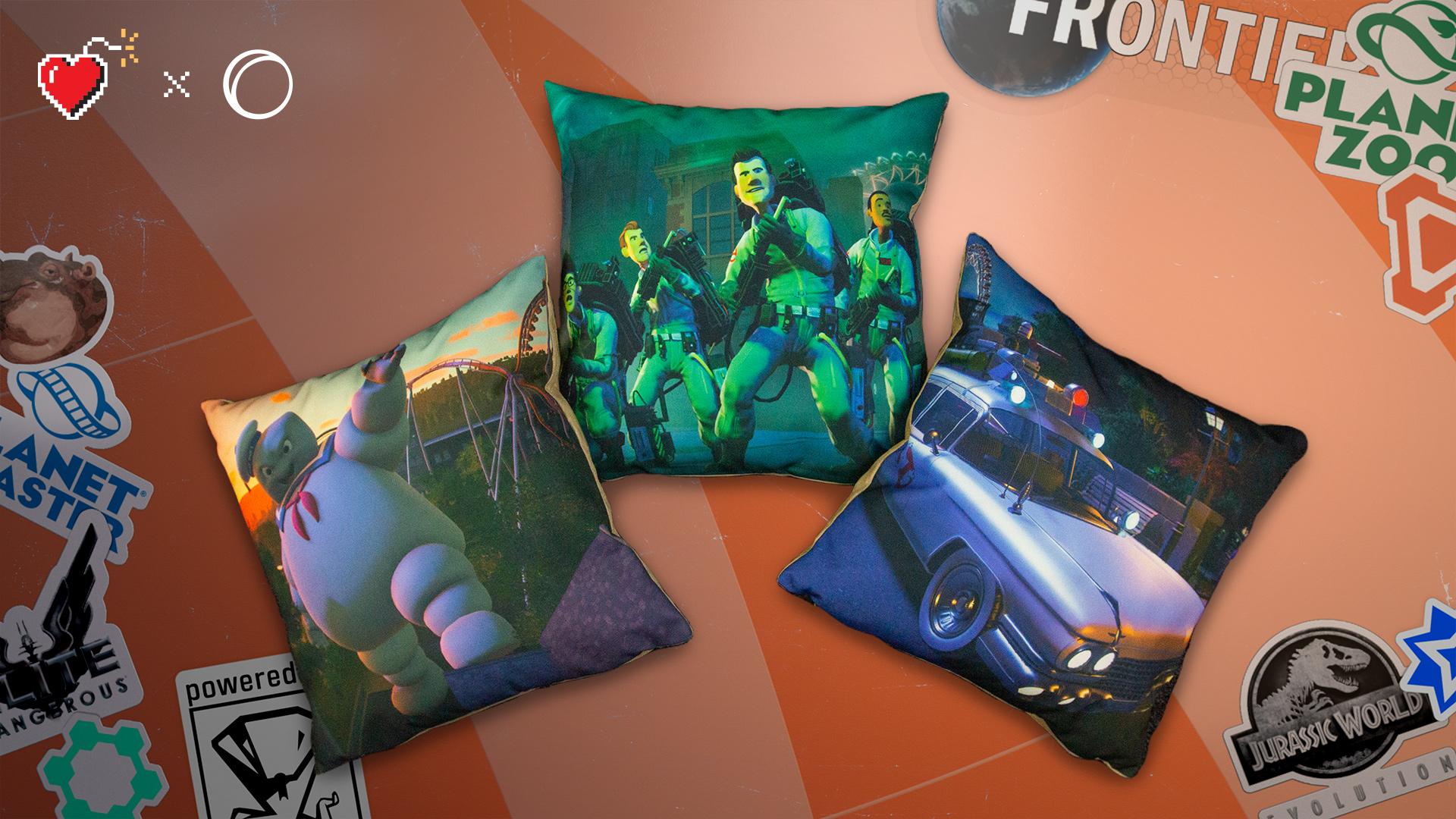 FR_charity_auction_PC_pillows.jpg