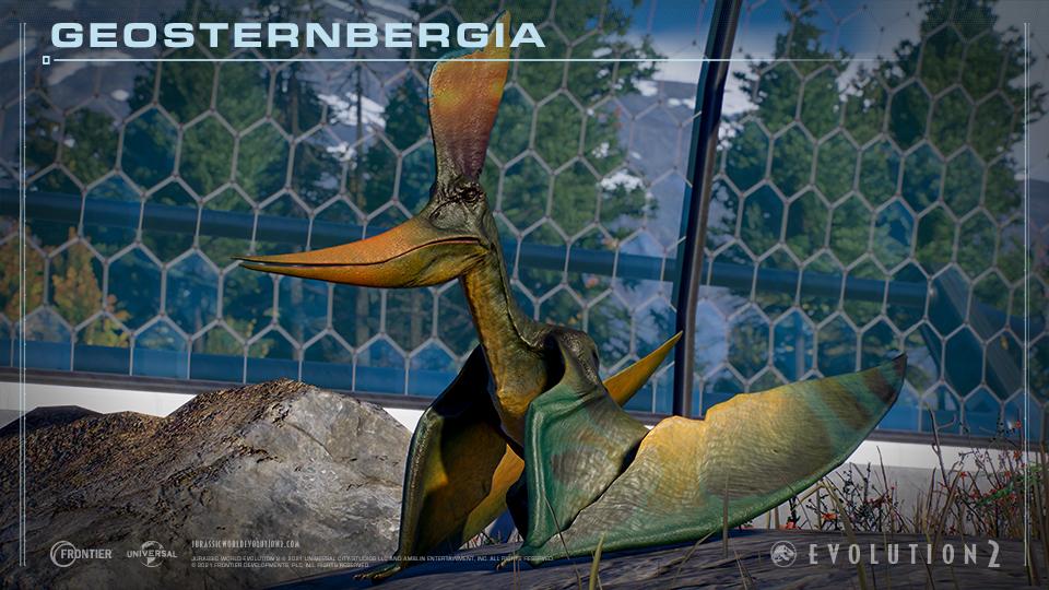 Geosternbergia.jpg