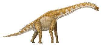 Giraffatitan.jpg