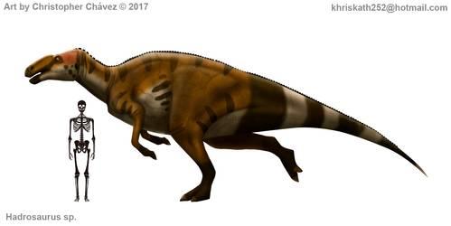 hadrosaurus_sp__by_christopher252_dbq1suh-250t (2).jpg