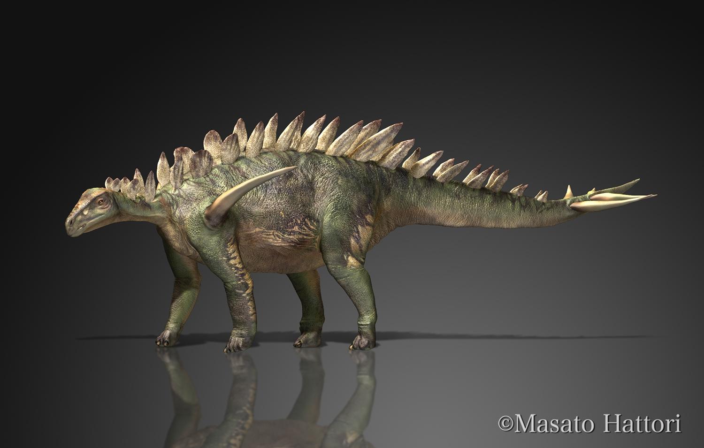 huayangosaurus20150524.jpg