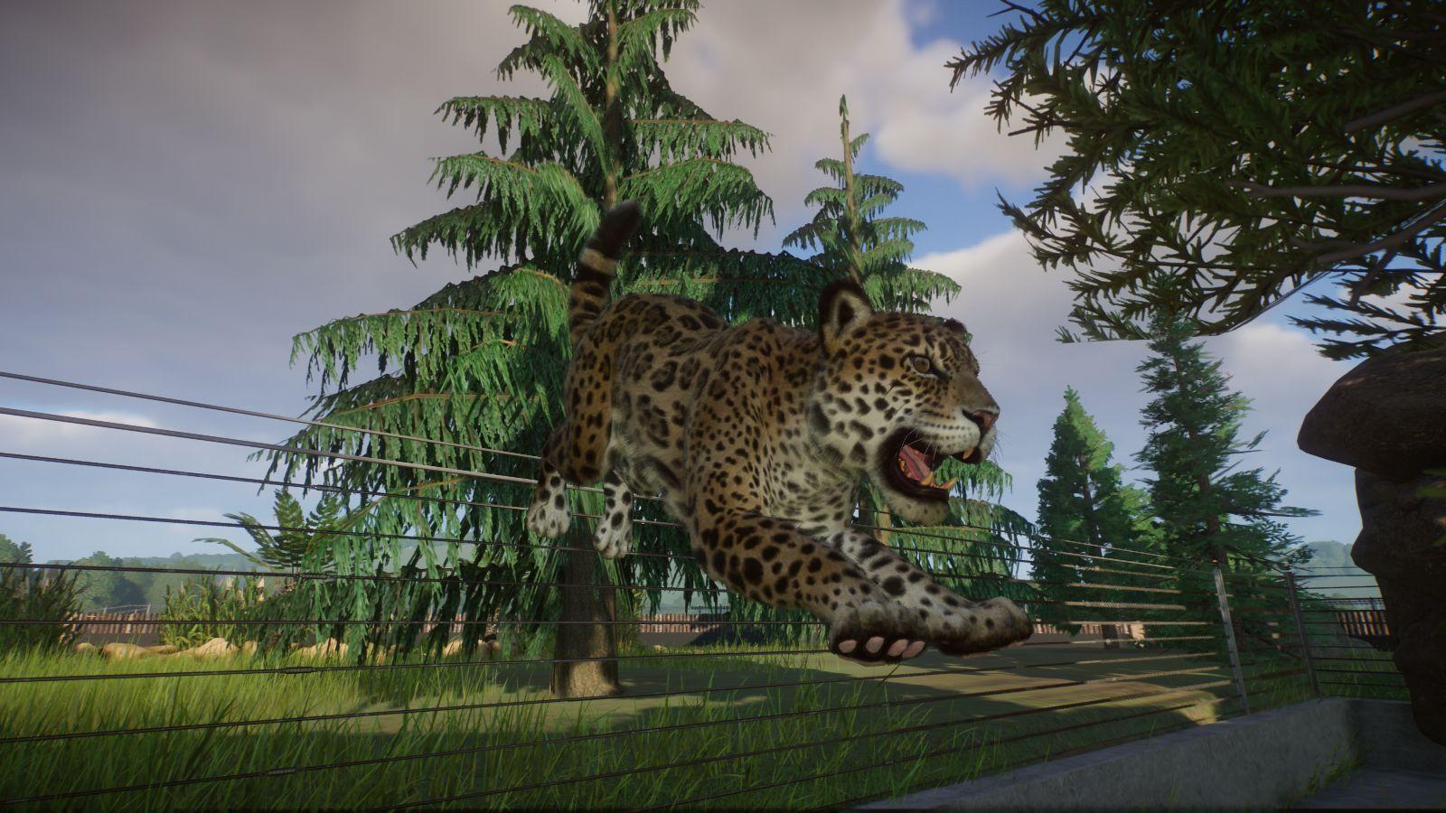 Jaguarsprung.jpg