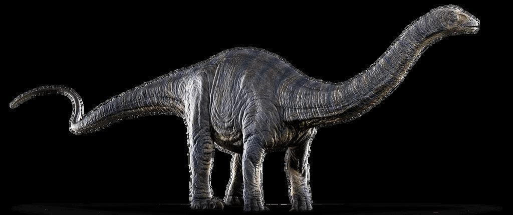 jurassic_world__apatosaurus_by_sonichedgehog2_d87wq3n-fullview.png