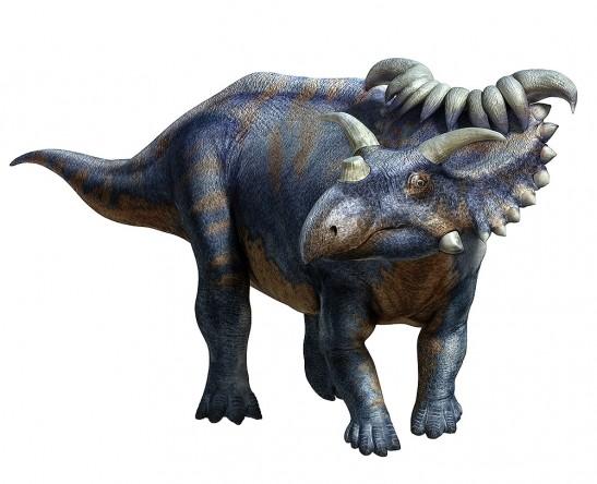Kosmoceratops-547x444.jpg