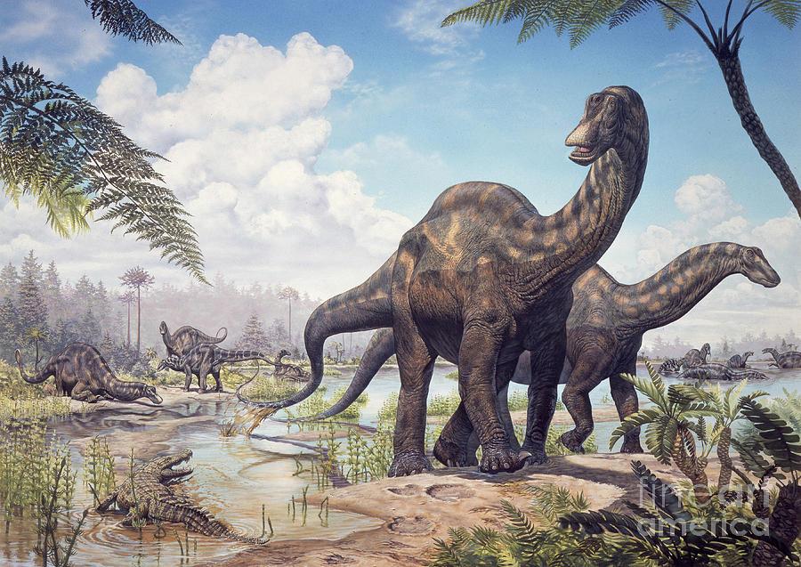 large-dicraeosaurus-sauropods-mark-hallett.jpg