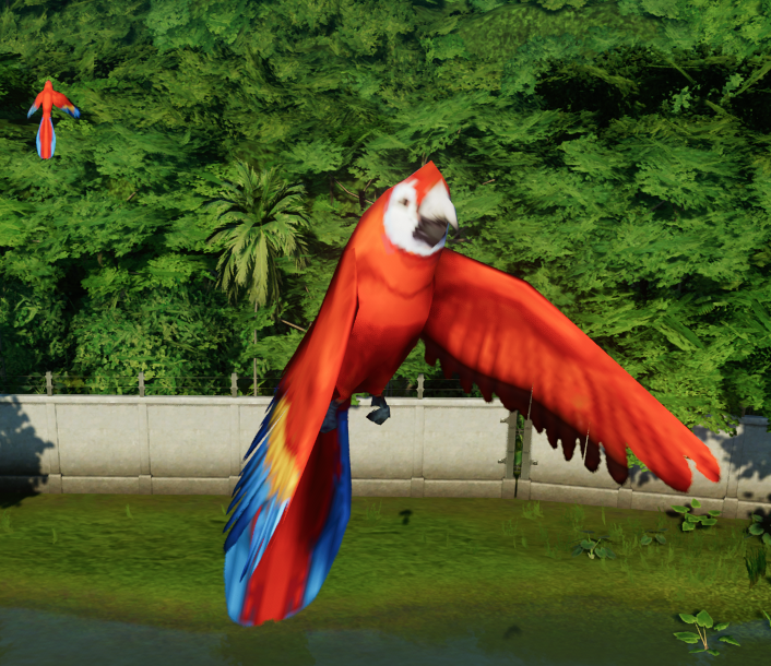 Macaws.png