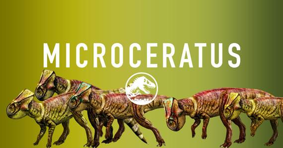 Microceratus.png