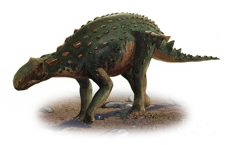 minmi-paravertebra-a-prehistoric-era-sergey-krasovskiy_07e1.jpg
