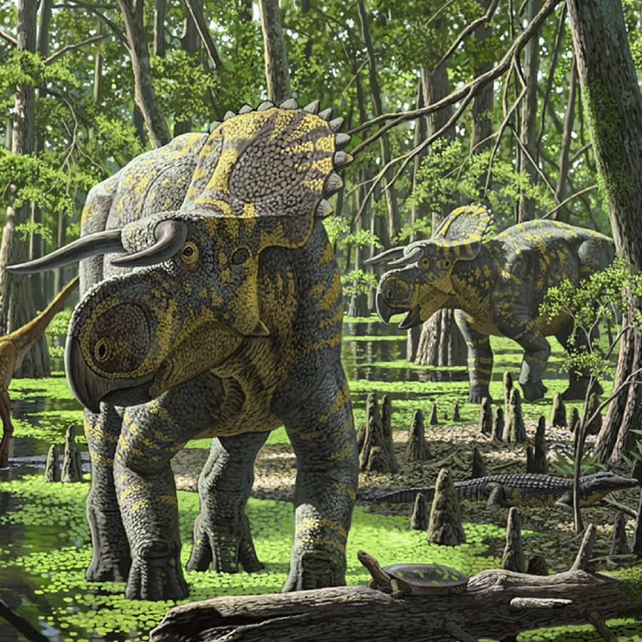 Nasutoceratops-swamp-martin_30e0.jpg
