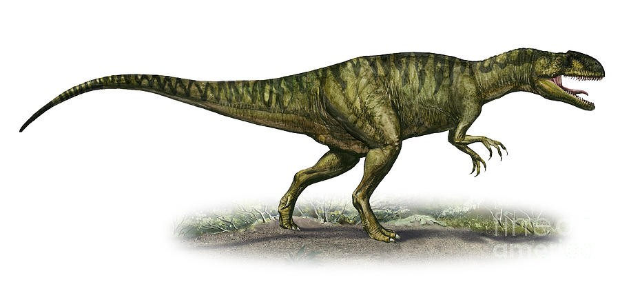 neovenator-salerii-a-prehistoric-era-sergey-krasovskiy_cdbe.jpg