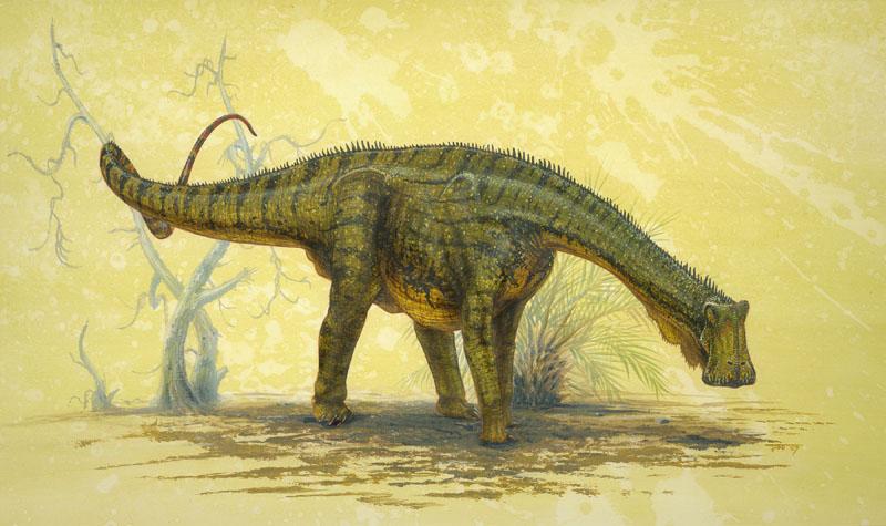 Nigersaurus.jpg