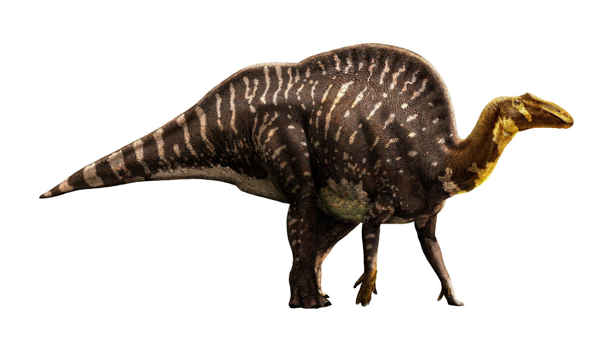 Ouranosaurus_AfricaScene_01_100ppi (1).jpg