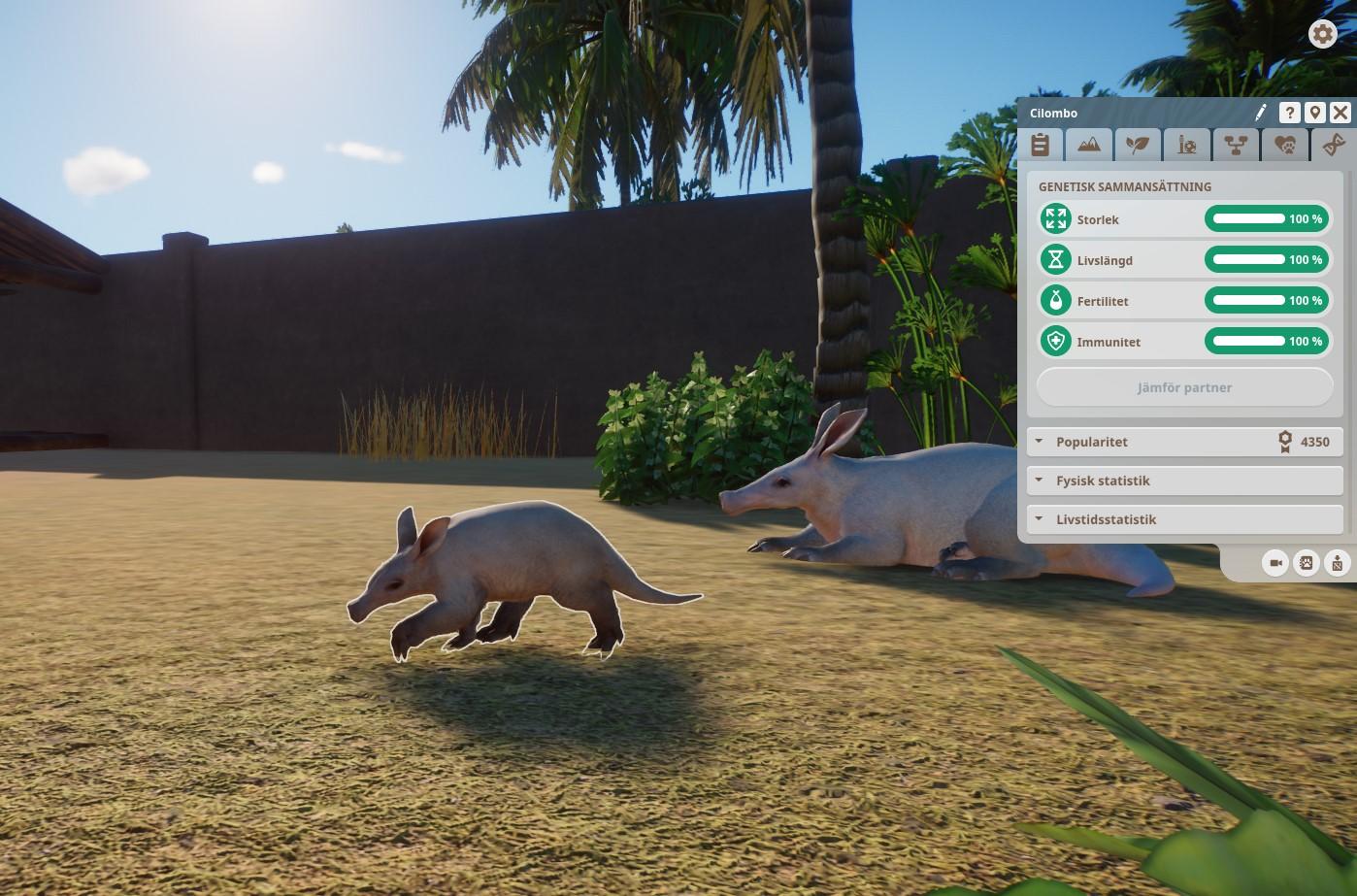 Perfect Arrdvark.jpg