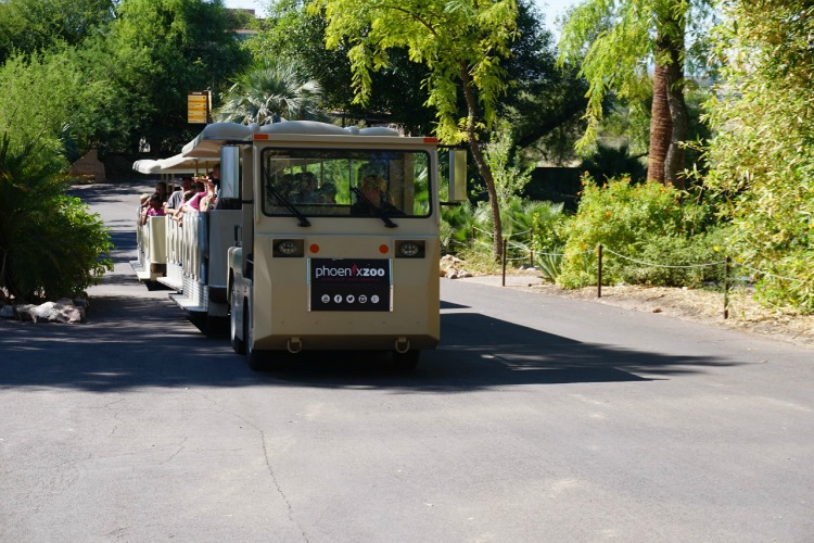 Phoenix-Zoo-Train.jpg