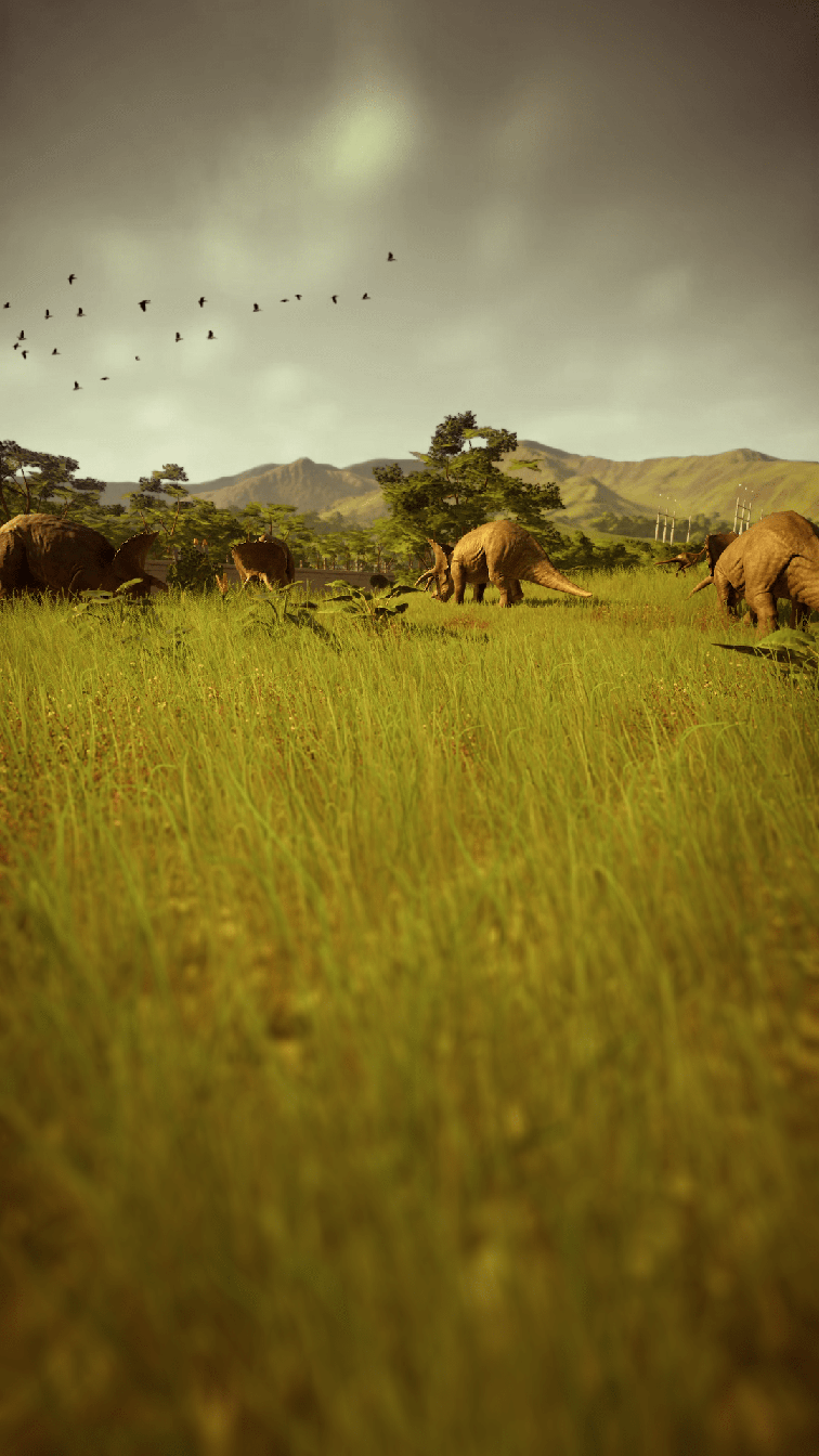 photo-triceratops_01.png