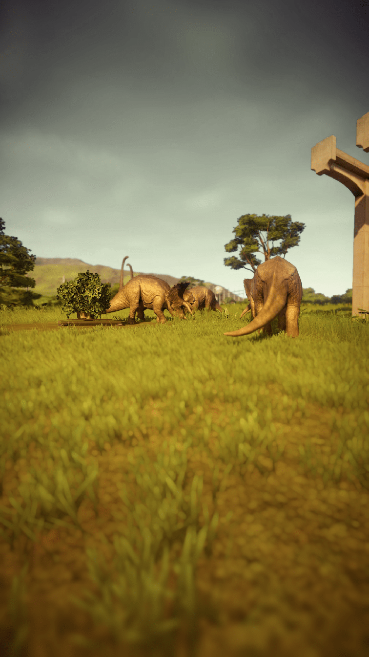 photo-triceratops_02.png