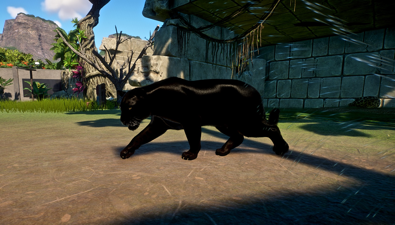 Planet Zoo Screenshot 2020.11.01 - 15.37.20.39 (2).jpg