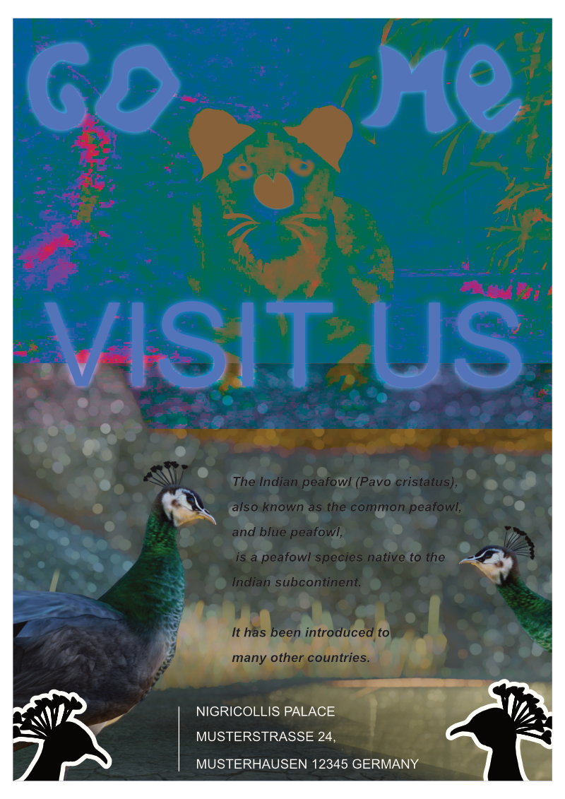 Planet-Zoo_peafowl-Poster_800w.png