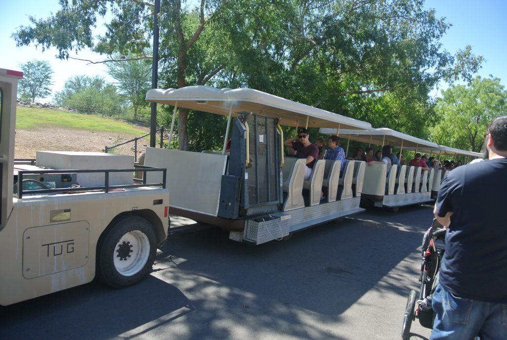Safari Cruiser.jpg