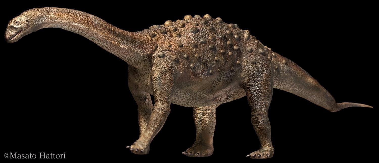 saltasaurus (1).jpg