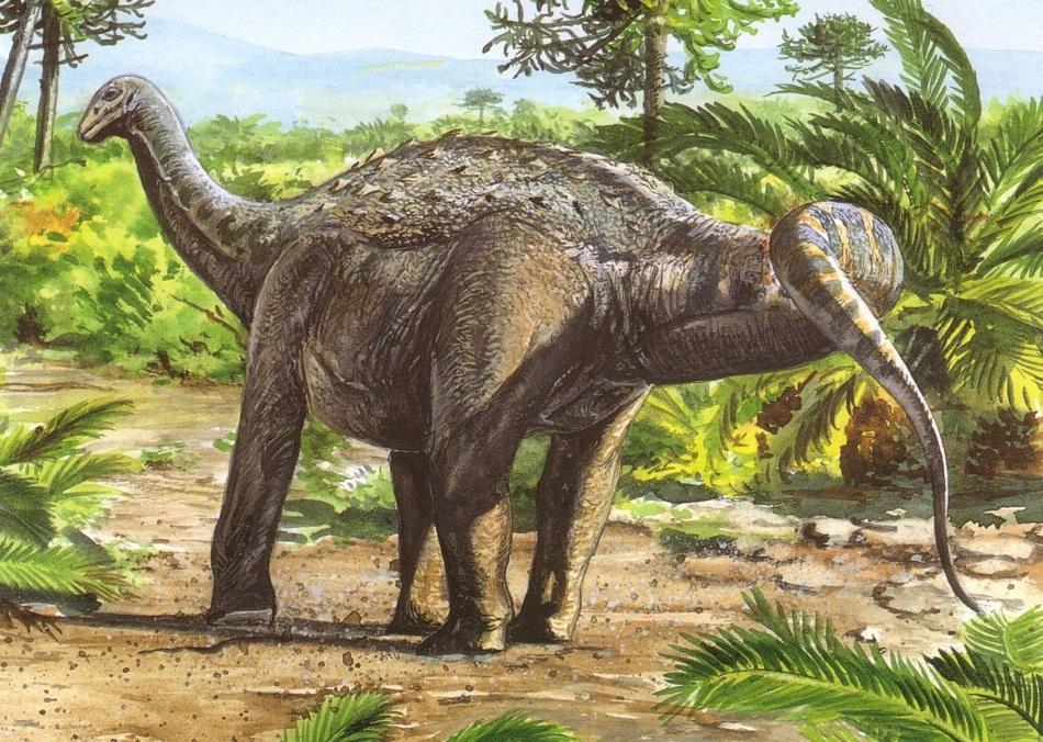 Saltasaurus-Dinosaur.jpg