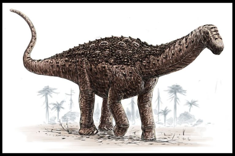 saltasaurusAB-56a252bb3df78cf7727469bb (1).jpg
