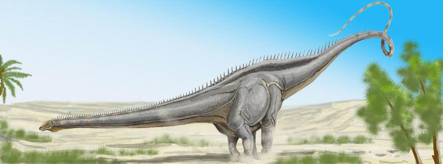 Seismosaurus.jpg